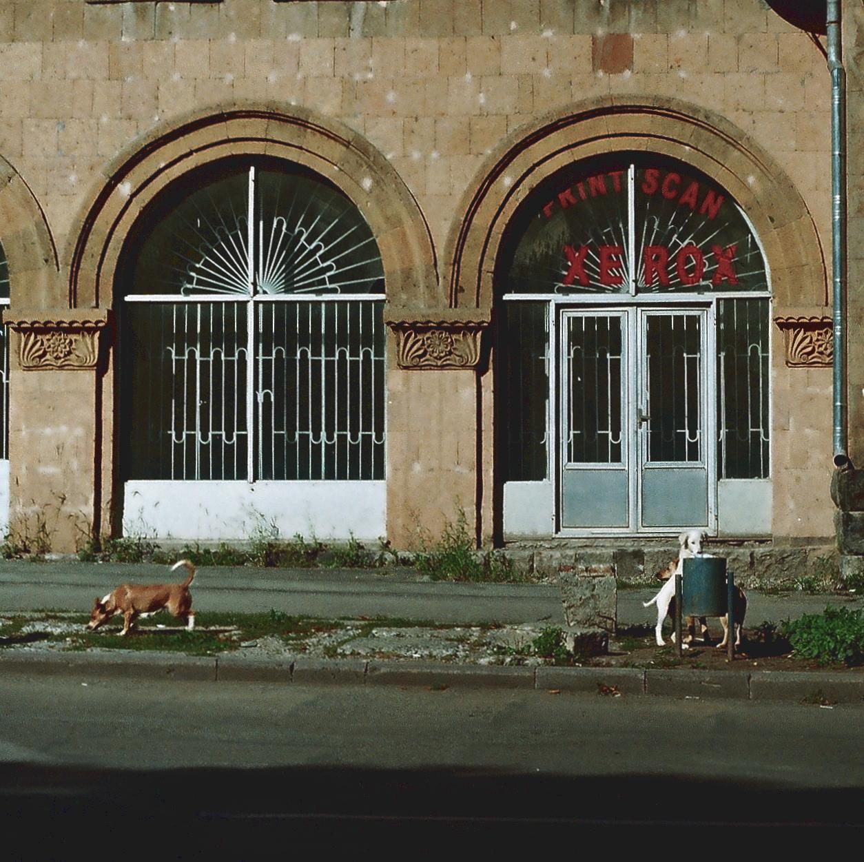 Վանաձոր, Տիգրան Մեծ պողոտա